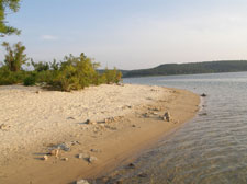 Natural sandy shoreline along Sand Island on Norfork Lake